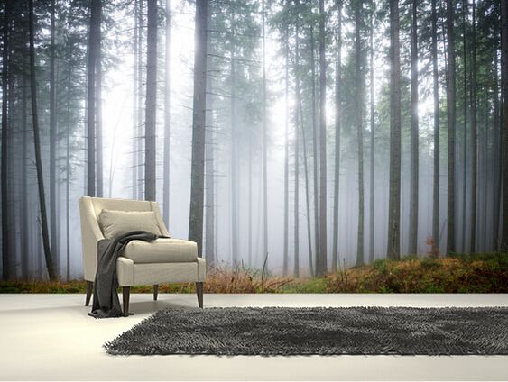 Custom natuurlijke behang. Ochtend Bos Mist, 3D landschap ...