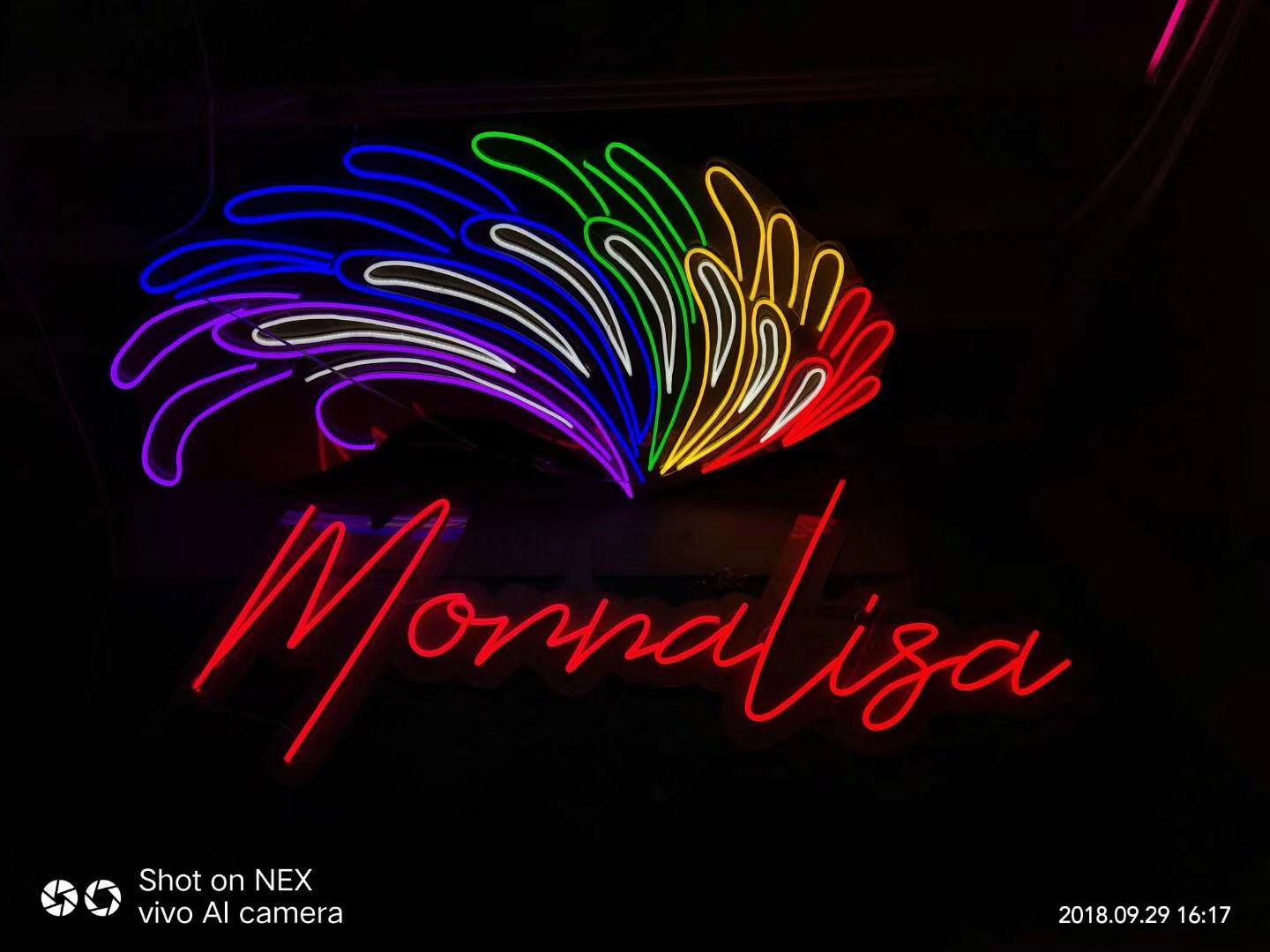 Pin by Led Neon Flex on Art Neon signs, Signs, Neon