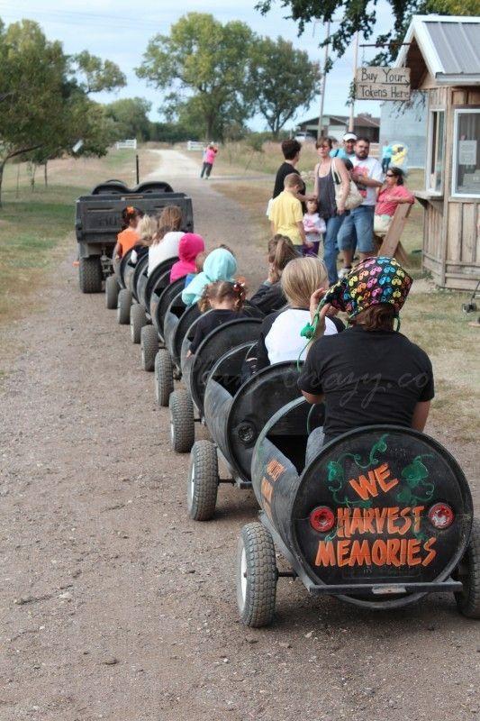 Best Corn Maze - Western US - Just Plum Crazy
