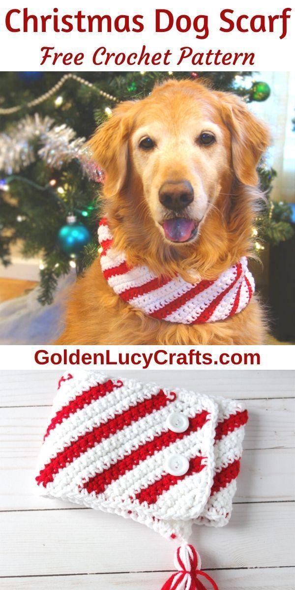 Crochet Christmas Candy Cane Dog Scarf