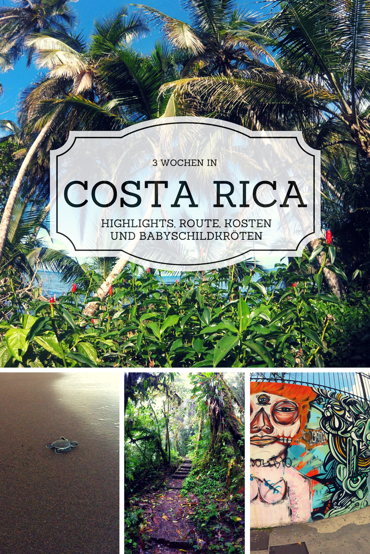 Highlights Und Reisetipps Fur 3 Wochen In Costa Rica Wir Stellen Dir Knackig Unsere Liebsten Destinationen Vor Sowie Routenvorschl Viajes Paisajes Costa Rica