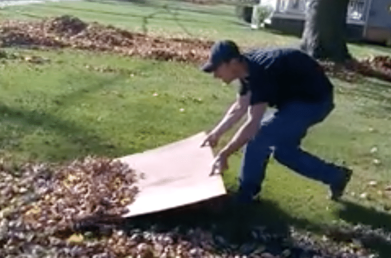 This Genius Leaf Raking Hack Changes Everything Raking Leaves Raking Diy Backyard