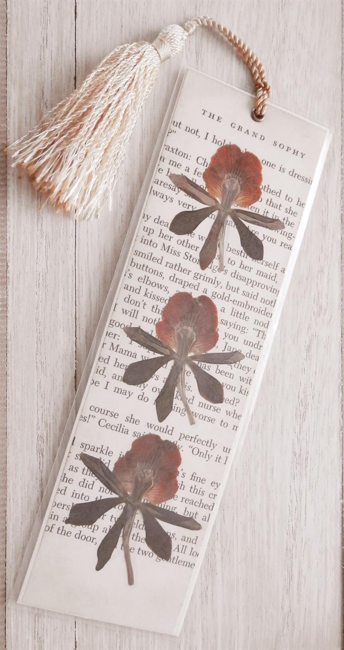 Printable Bookmarks My New Favorite Book Blooming Homestead Free Printable Bookmarks Diy Bookmarks Bookmarks Printable
