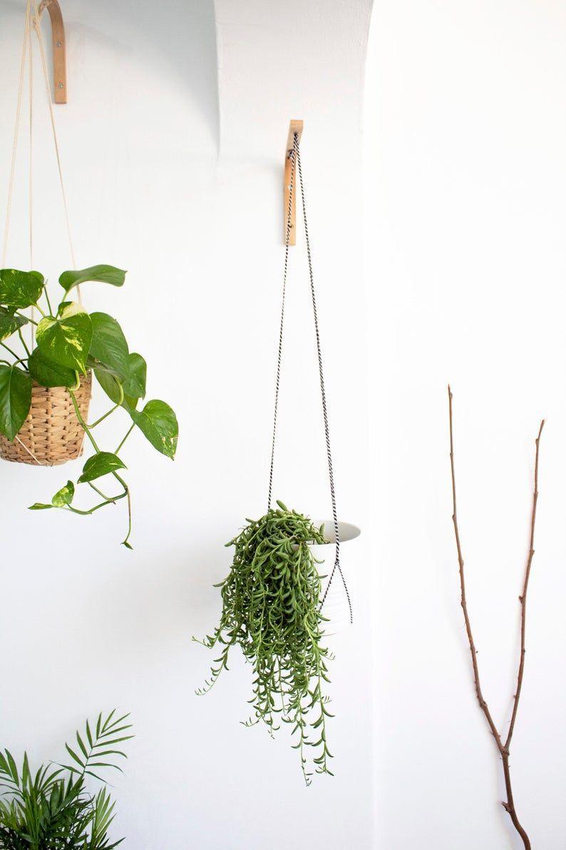 Hanging Plants Wood Plant Hanger Indoor