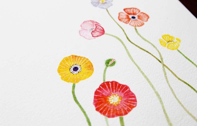 Poppies + Distractions - Sanae Ishida