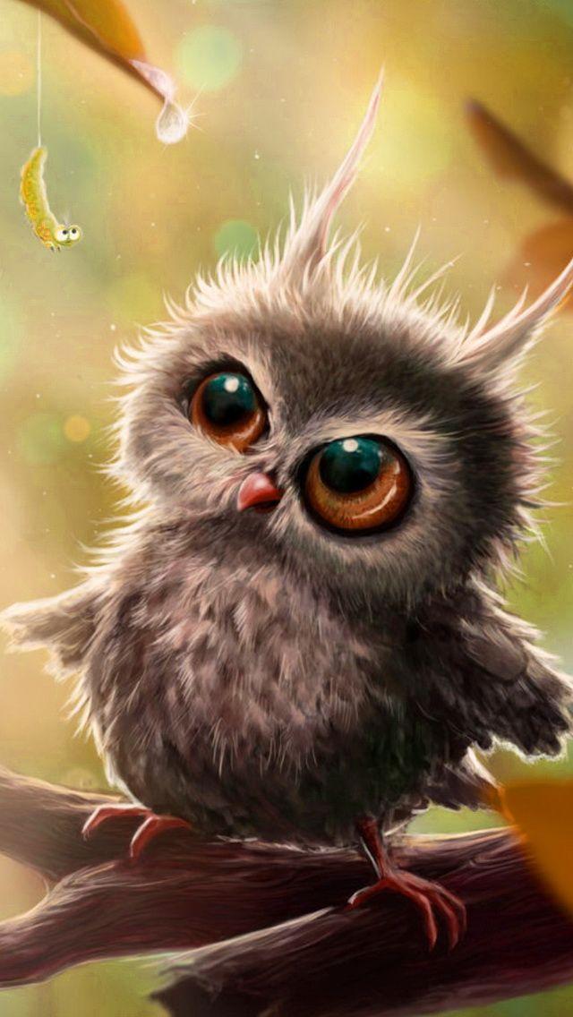 Cute Owl Iphone Wallpaper Background Eulenbilder Pinterest