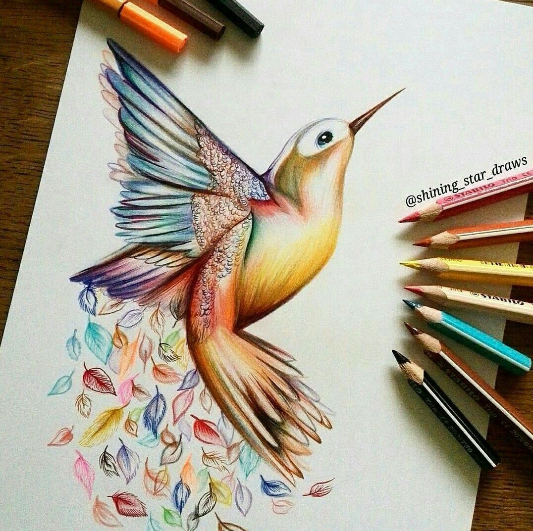 Pin by Katie Novak on Critter/Disney Artwork Hummingbird