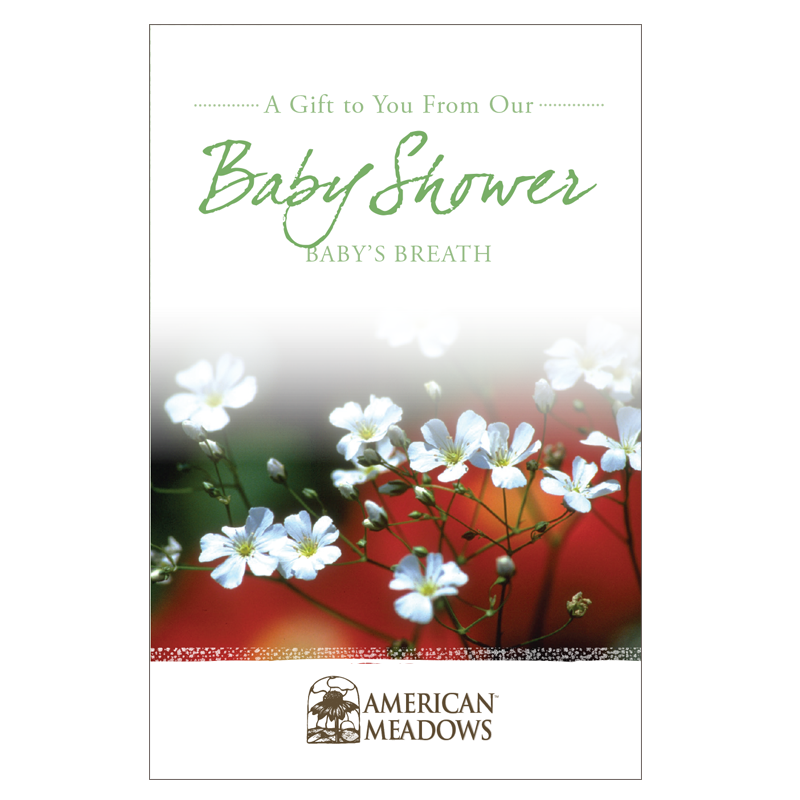 Baby Shower Seed Packet Flower Seeds Packets Flower Seeds Wildflower Seeds
