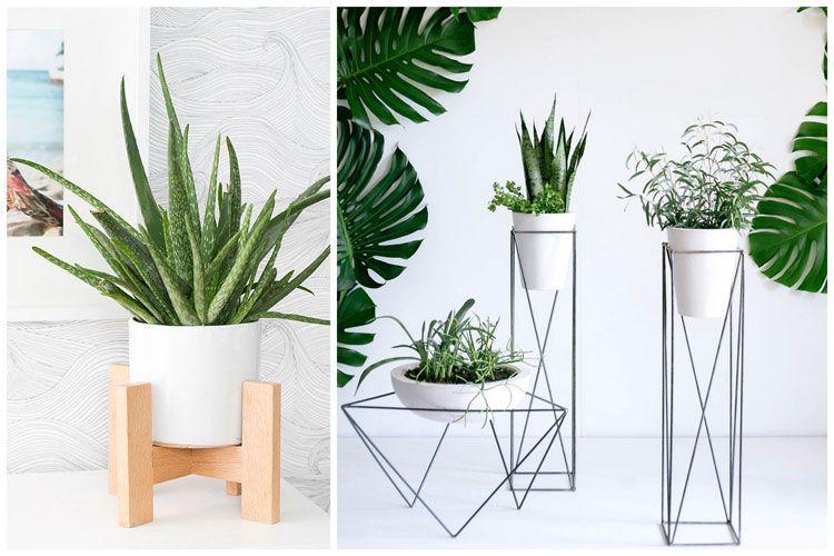 17 Idees Deco Pour Mettre Vos Plantes Vertes En Valeur Plante Interieur Plante Verte Plante