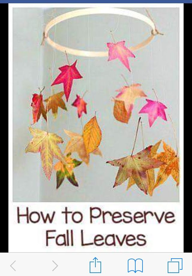 Pin by Spicolie on Fall | Fall crafts for kids, Fall crafts