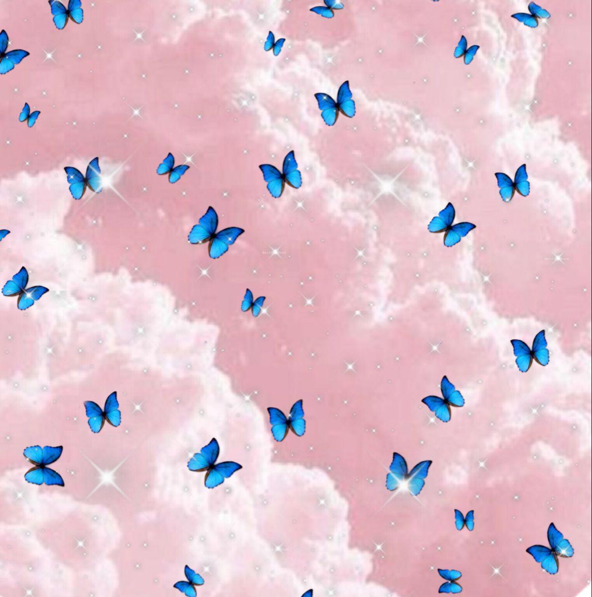 Aesthetic Butterfly Wallpaper Aesthetic Butterfly Wallpaper Butterfly Wallpaper Blue Butterfly Wallpaper