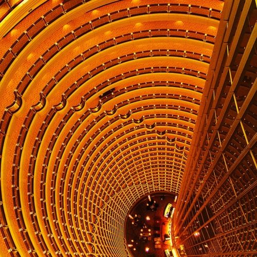 """From """"Patterns in Melbourne's Modern Architecture""""...Cabbagerose Tumblr Inspiration"""