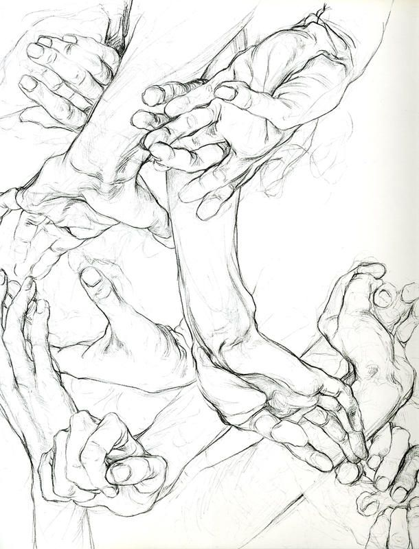 Drawing Hands A Chapter In Anatomy By Sarah Simblet Art