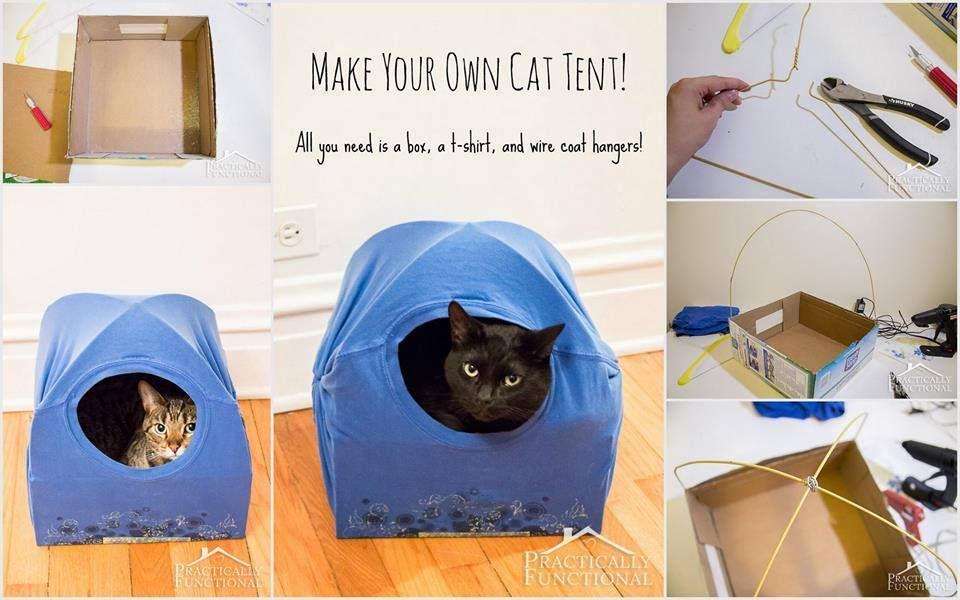 Ideas creativas y manualidades Haz una práctica casa para tu gato - ideas creativas y manualidades