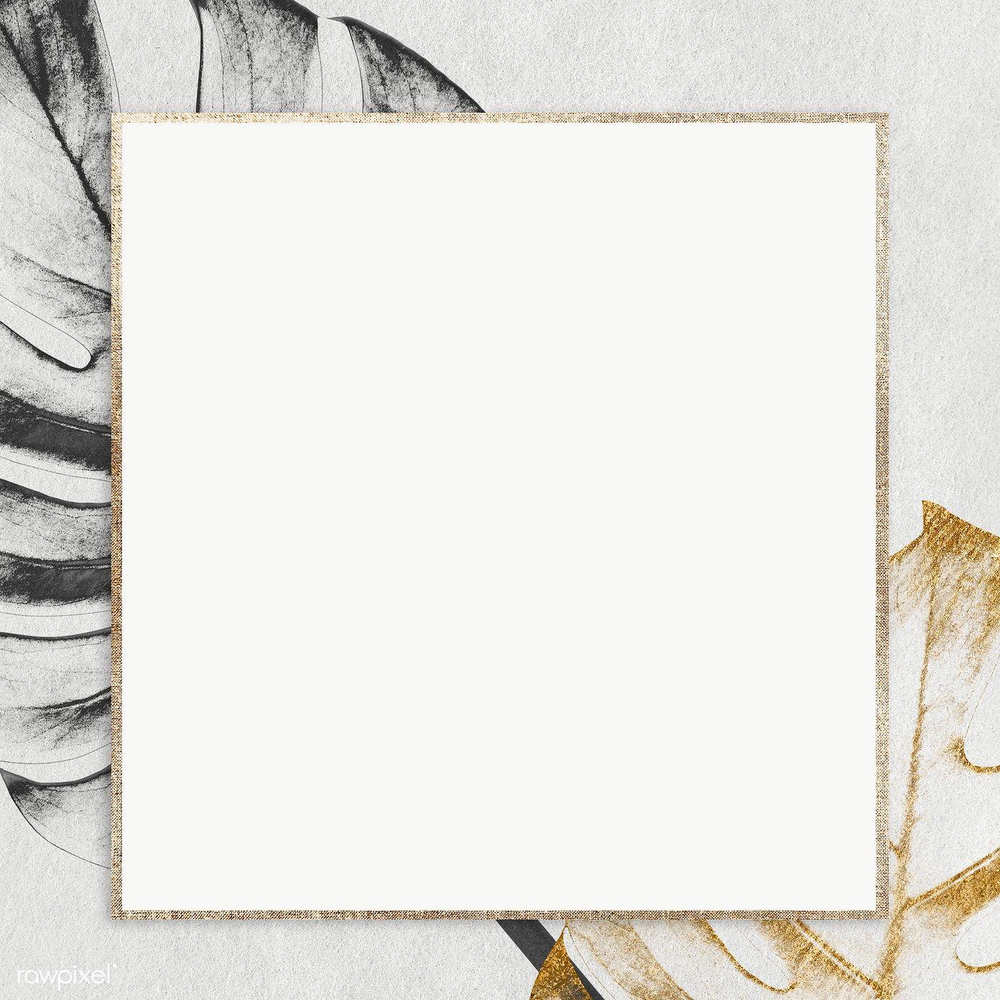 Download Premium Png Of Golden Square Monstera Frame Design Element Photo Frame Design Frame Design Design Element