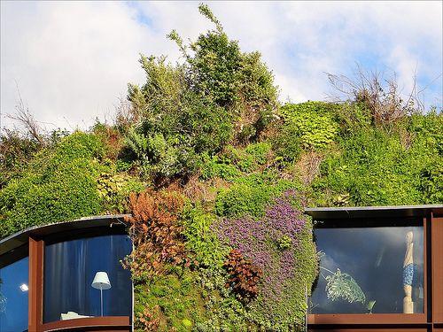 Au coeur de Paris, respirez l\'été dans ce beau jardin signé Gilles ...