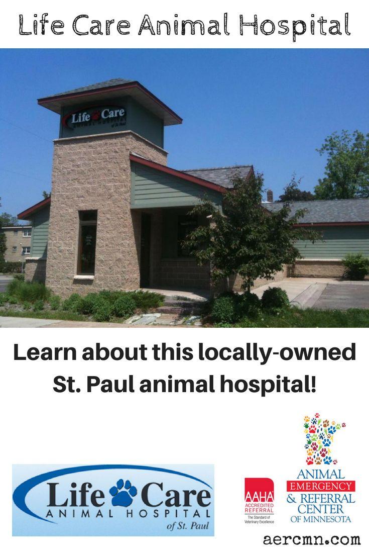 Life Care Animal Hospital (With images) Animal hospital