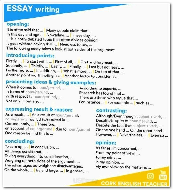 essay writing requirements