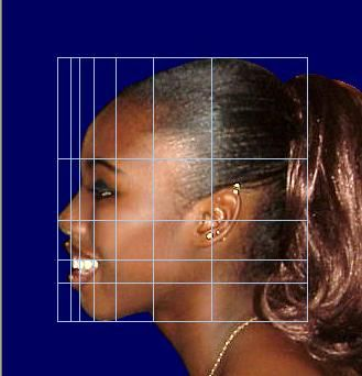 Human face beauty and the golden ratio unveiled by phimatrix human face beauty and the golden ratio unveiled by phimatrix software ccuart Image collections