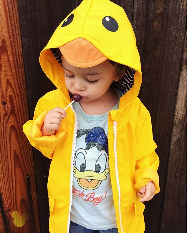 provide plenty of reasonable price official images becks227's picture | toddler stuff | Cat, jack, Toddler boys ...