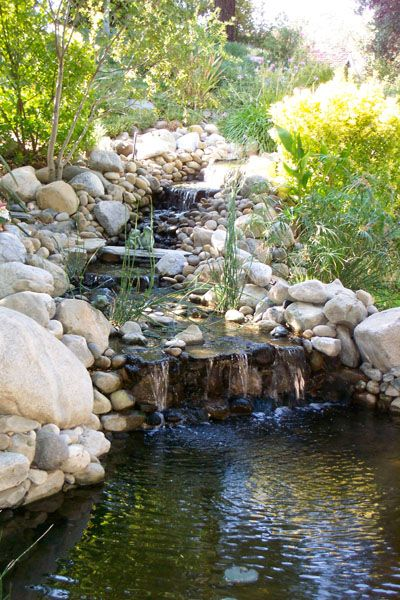 Pin By Sunland Water Gardens On Pond Supplies From Sunlandwatergardens Com Pond Landscaping Koi Pond Water Garden