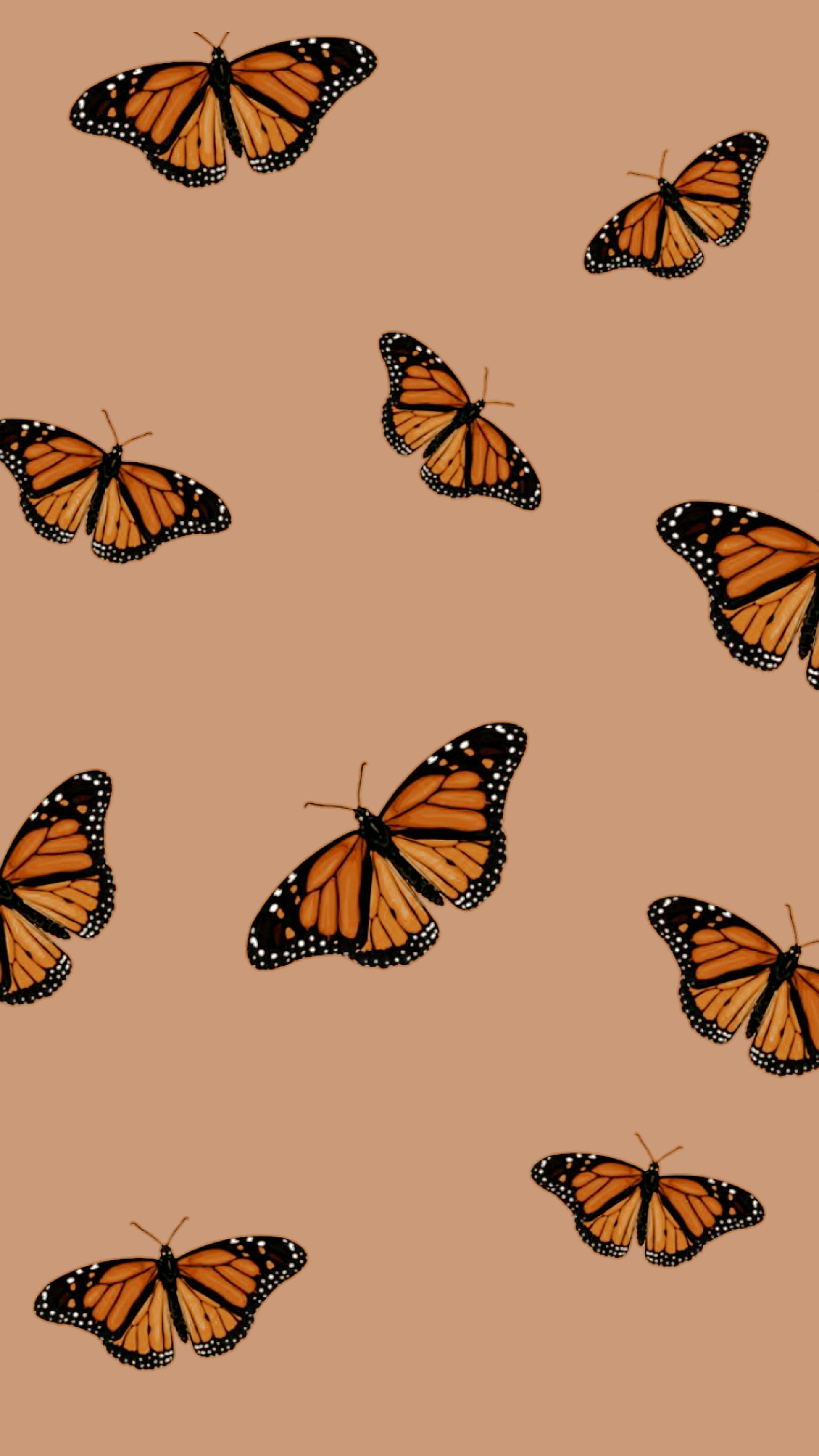 How To Create Your Dream Aesthetic Collage Wallpaper Create Discover With Picsart Butterfly Wallpaper Iphone Wallpaper Vintage Pretty Wallpaper Iphone