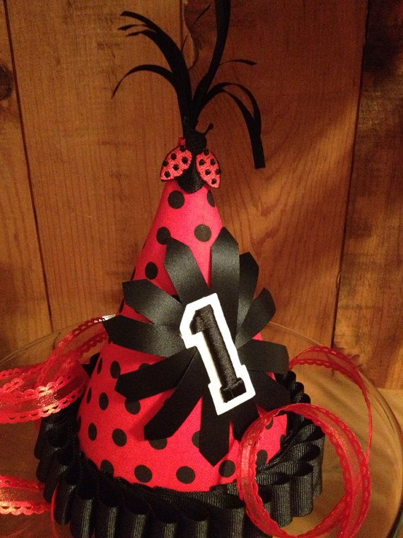 The Ladybug Birthday Hat