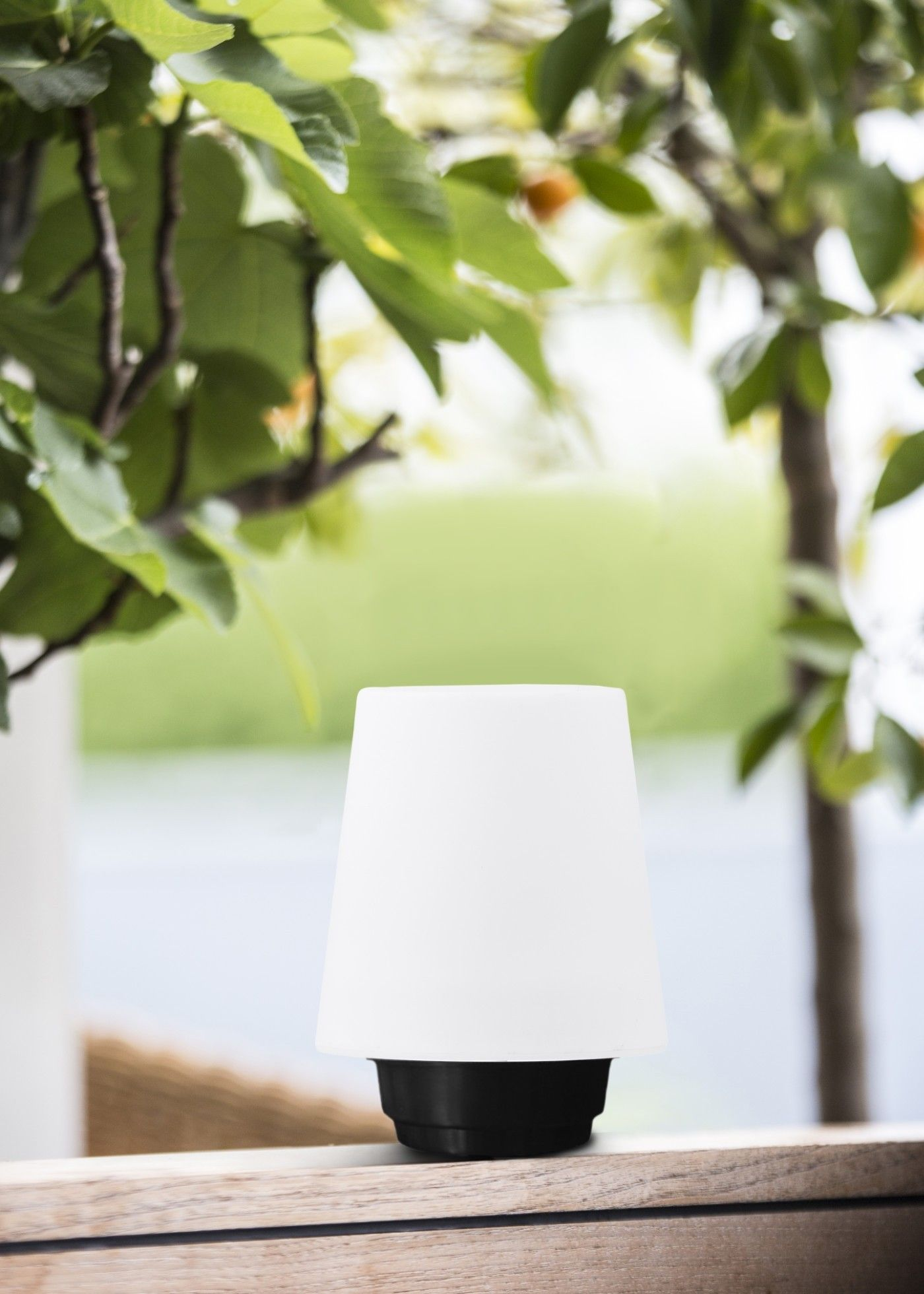 Gacoli Checkmate No.1 Dock tafellamp - klein GA900116 Verlichting ...