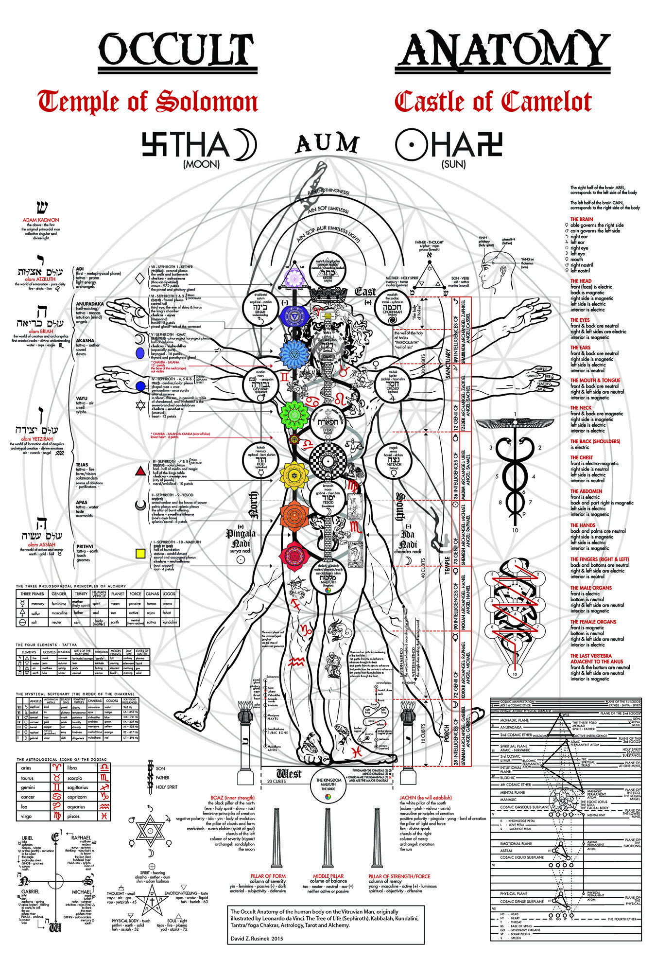 The Occult Anatomy Print - Kabbalah, Alchemy, Tree of Life, Golden
