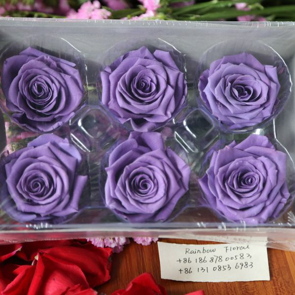preserved flowers in glass#preserved flower#wholesale preserved ...