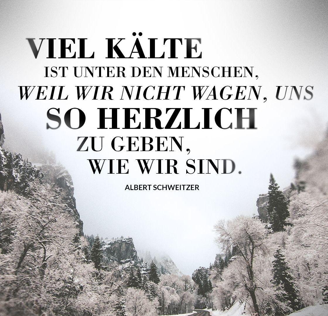 Zitat Albert Schweitzer | Beste Zitate der Welt | Schlaue zitate