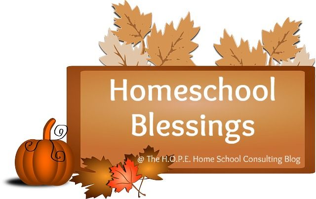 Homeschool Blessings - God, family, and jobs are what many people express thanks for during this time of year.  I too am thankful for those things as well as the homeschool blessings my family have received. Let's see if your blessings are similar to mine.