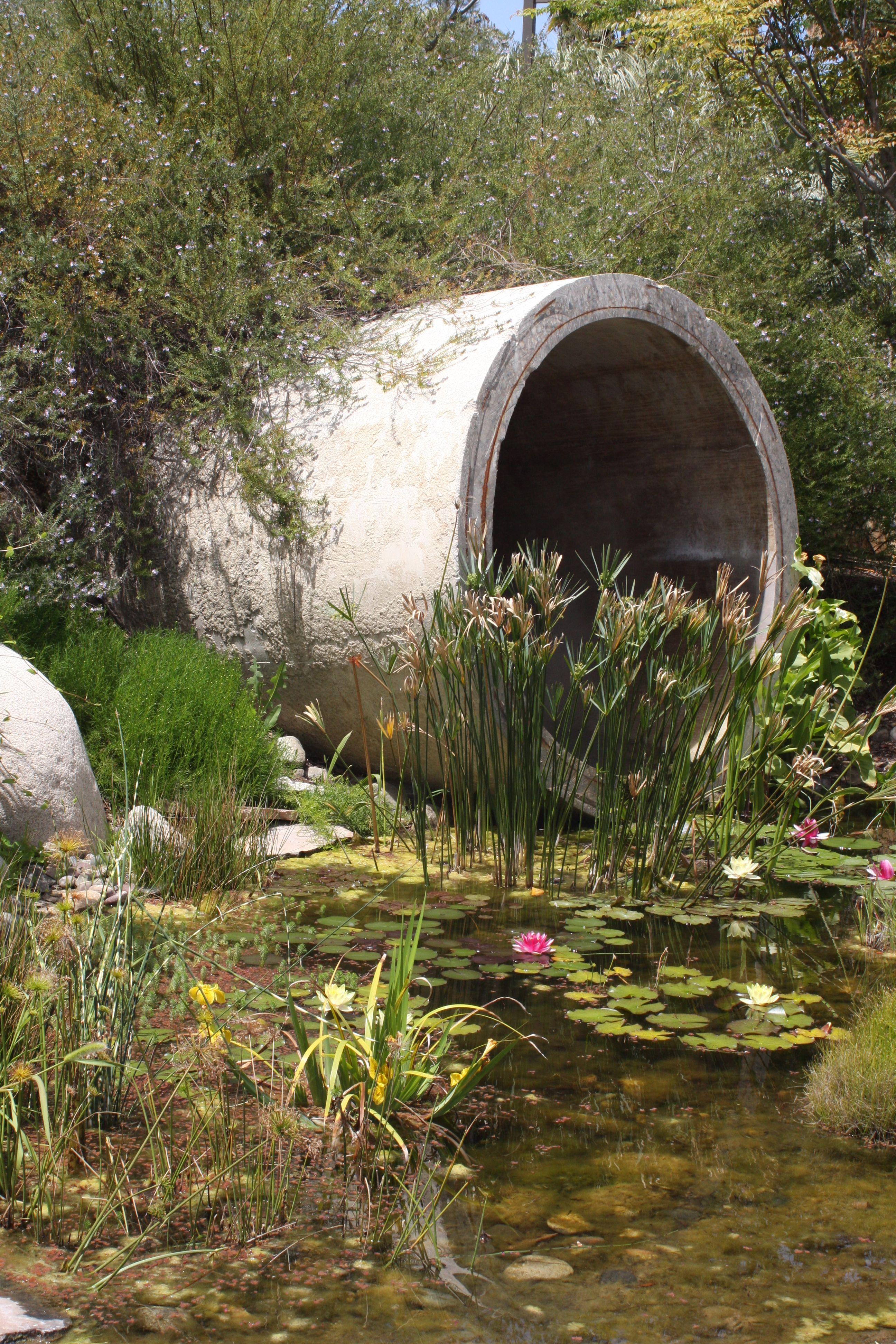 Cuyamaca water conservation garden | garden | Pinterest | Water ...