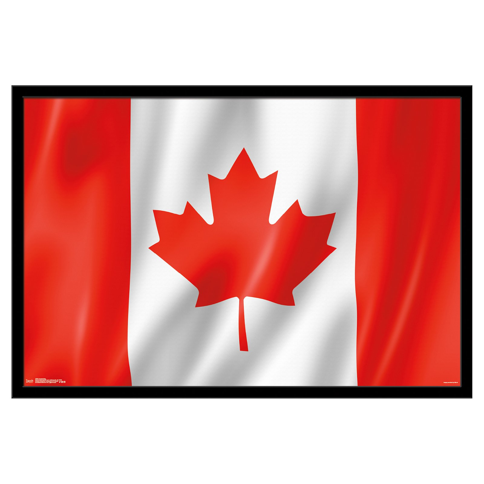 Trends International Canada Flag Poster Products In 2019 Flag