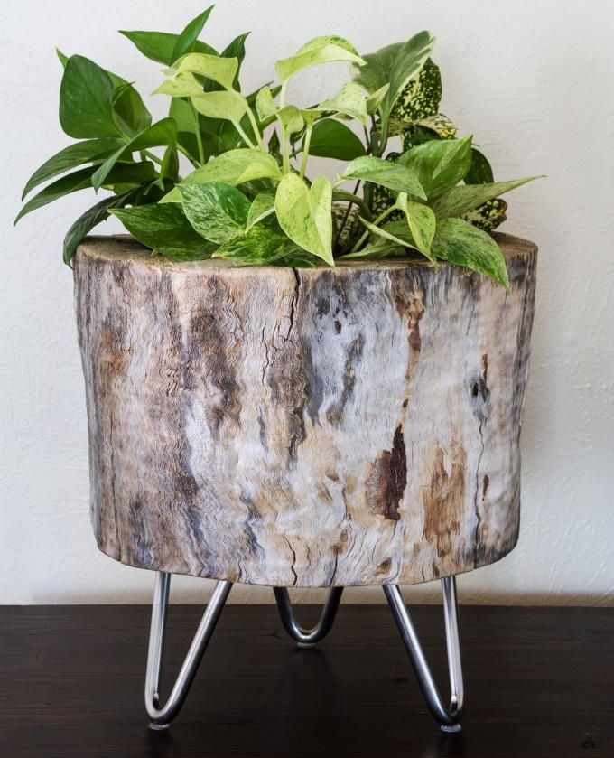 Tree Stump Idea Diy Planter Diy Planters Diy Wood Planters Tree Stump Planter