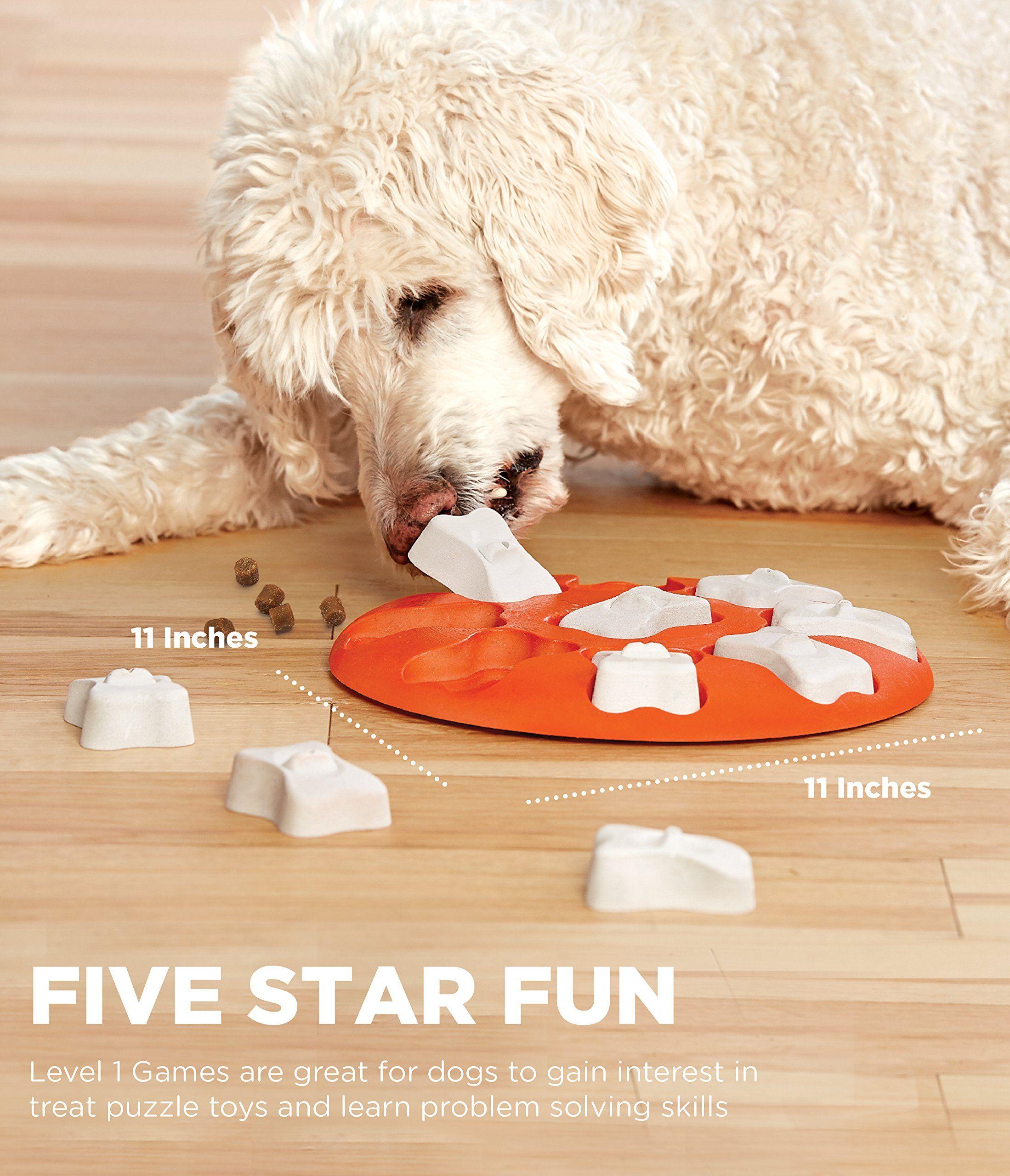 Outward Hound Nina Ottosson Dog Smart Dog Puzzle Toy Dog Game