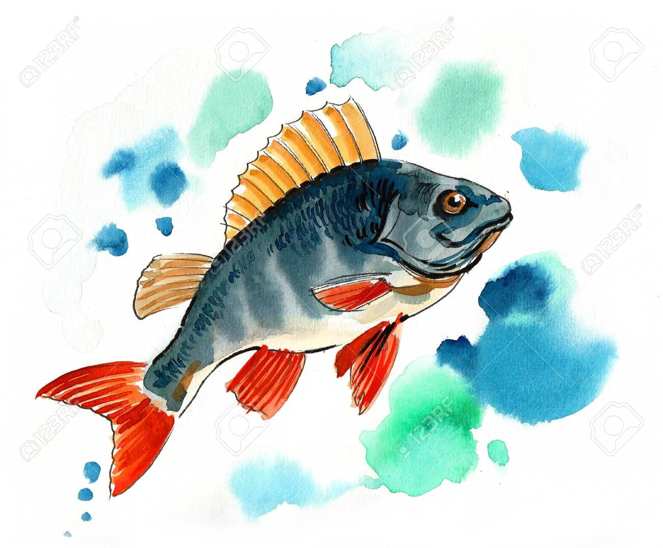 Fish In Water Watercolor Painting Ad Water Fish Painting Watercolor Watercolor Fish Fish Painting Watercolor Paintings