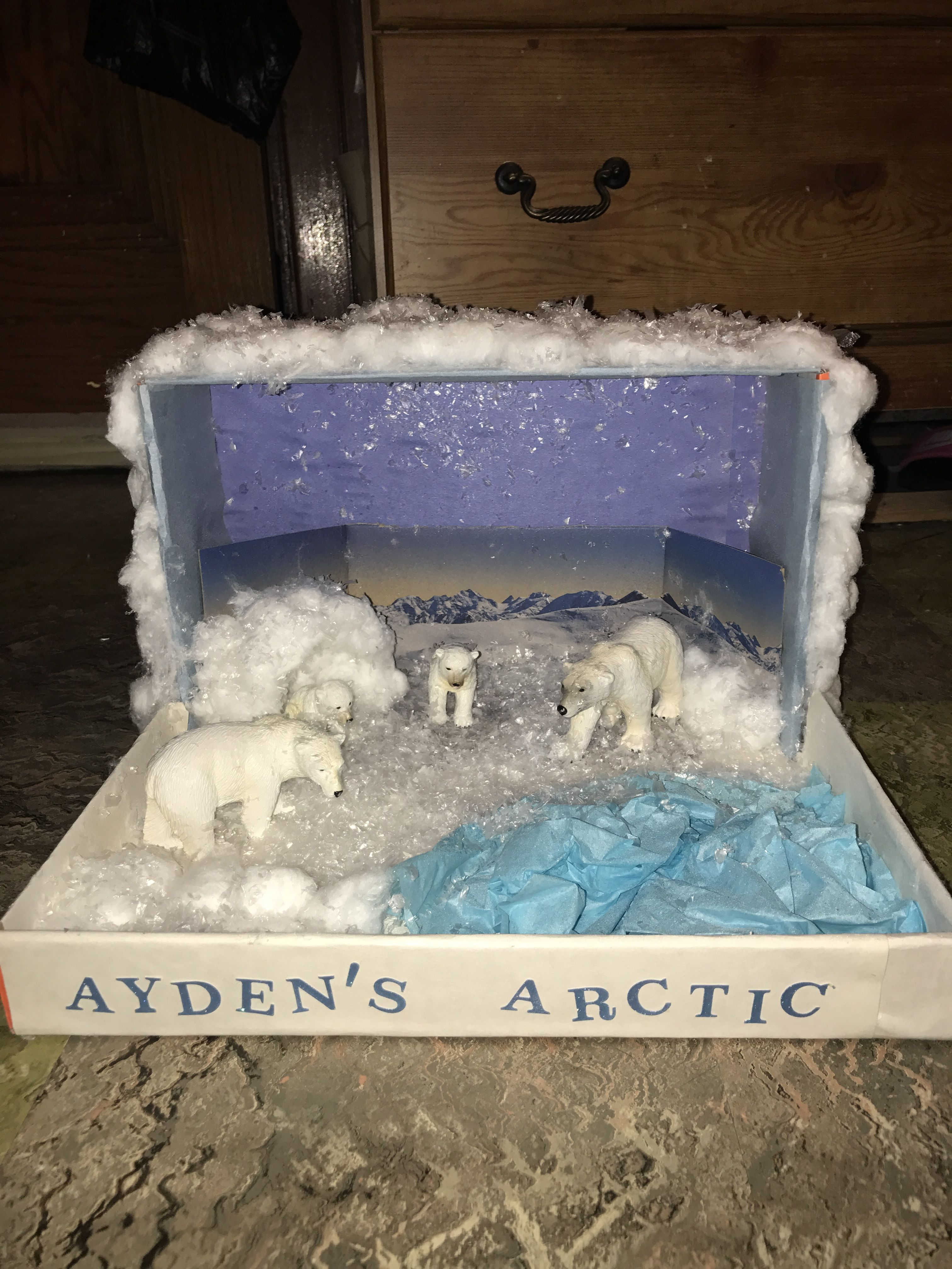 Kids Diorama With Details: Arctic Diorama ️