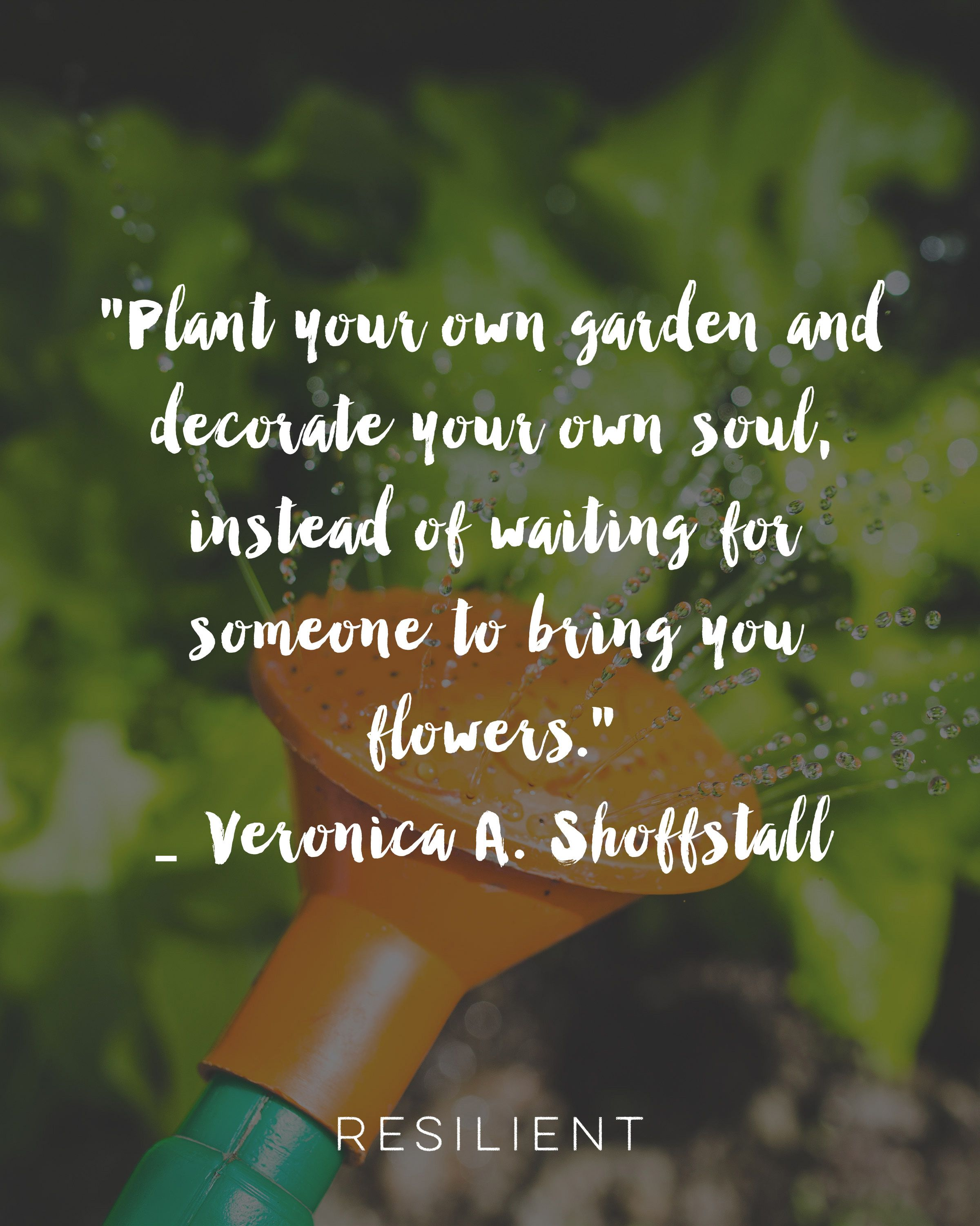 50 Beautiful Quotes About Self Love | Veronica, Plants and Inspirational
