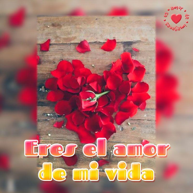 Imagen De Petalos En Forma De Corazon Con Frase De Amor Corta