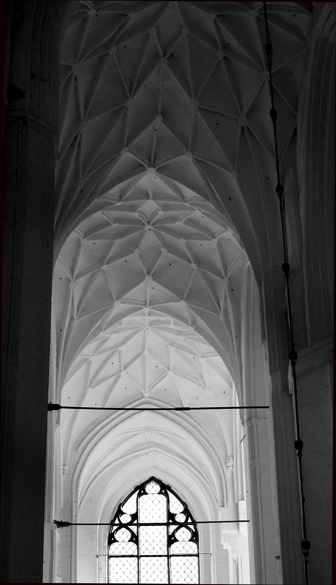 """sainted-places:  """"vaults, St. Mary's Church Gdańsk, Poland. (May 2017).  """""""