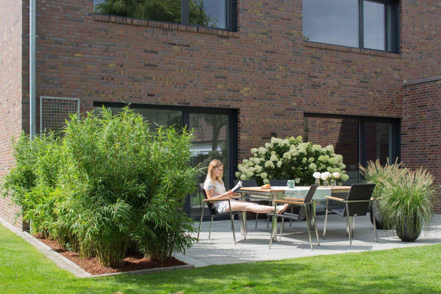 Der Perfekte Sichtschutz Die Funf Besten Tipps Dachgarten