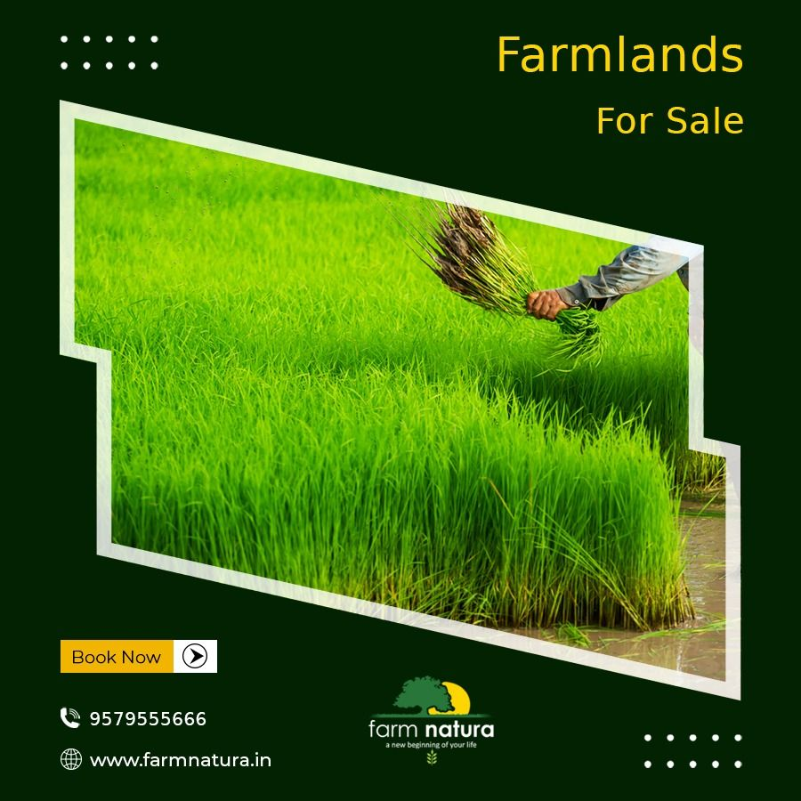 farmnatura.in in 2020 Farmland for sale, How to buy land