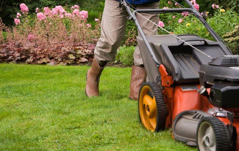 Gardener Mowing The Lawn Man Gardener Mowing The Lawn Sponsored Mowing Gardener Man Lawn Ad Lawn Care Lawn Repair Landscape Design