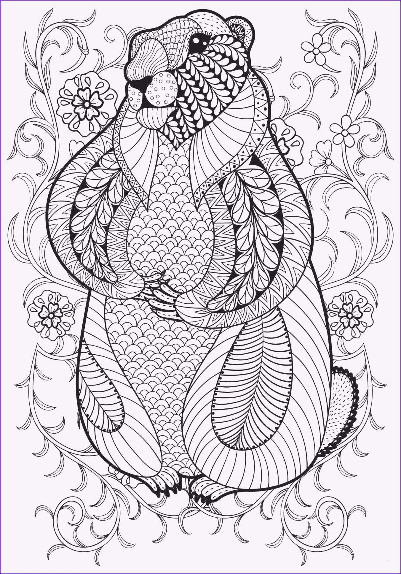 Neu Yakari Malvorlagen Zum Drucken Sketches Female
