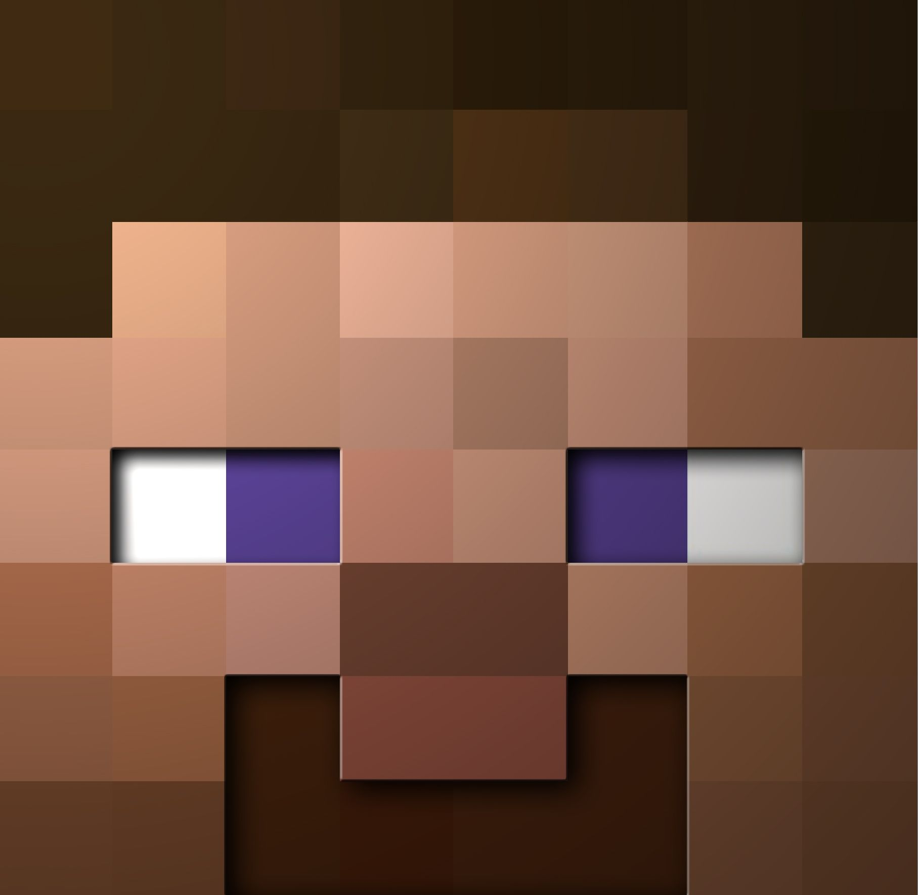 Steve Minecraft Side Viewviewing Gallery For Steve Minecraft