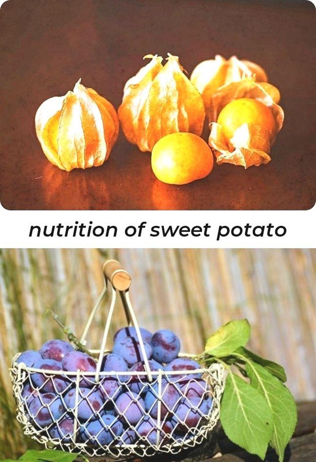 hnutrition of sweet potato_635_20190129050957_54