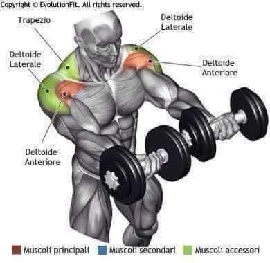 Bodybuilding Techniques Https Planetsupplement Com Body Building Nutrition Basics Poids De Musculation Musculation Bras Musculation