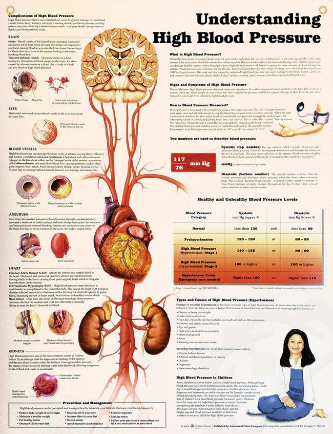 Understanding High Blood Pressure 20x26 | Pinterest | Discus, High ...