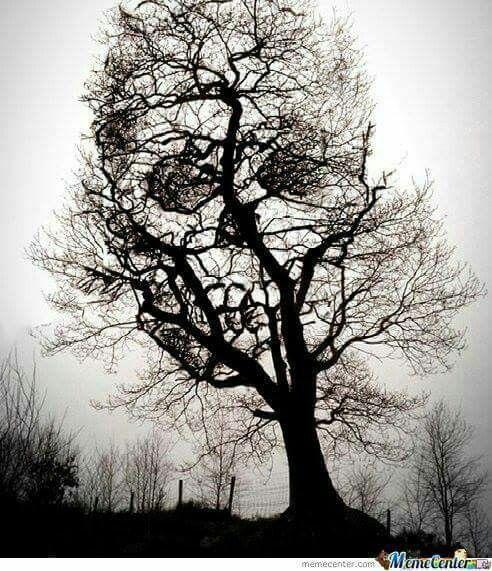 "ALL IS VANITY 16x20/"" Poster Optical Illusion Skull /& Mirror Surrealism Art Print"